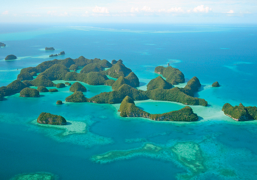 A Pledge to Palau