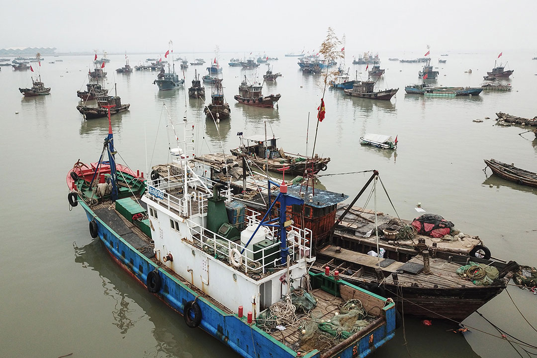 Experts: PRC not doing enough to thwart illegal fishing in South China Sea