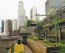Singapore: Urban farms to help increase food supply