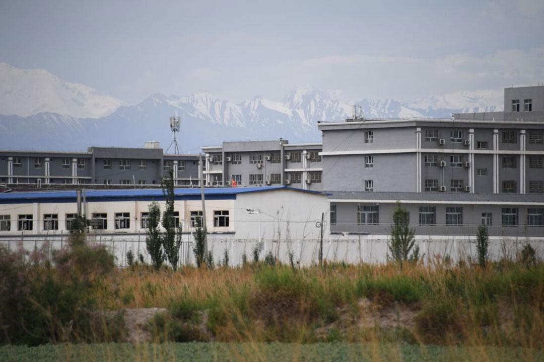PRC's big data program identifies Uighurs for 'arbitrary' detention