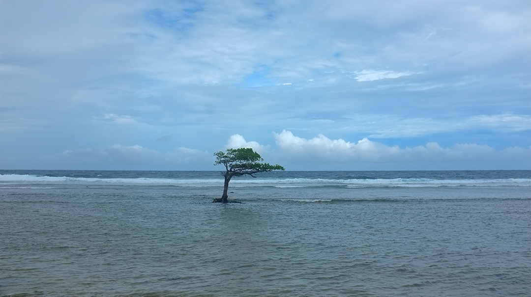 Islands, rocks and tuna: Pacific nations draw new battle lines against rising seas